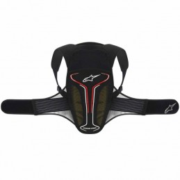 Protectie Alpinestars Evolution Back Protector